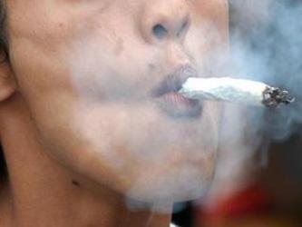 В Грузии предлагают легализовать марихуану